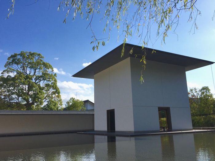 鈴木大拙館 金沢 Kanazawa D.T.Suzuki Museum Zen 禅