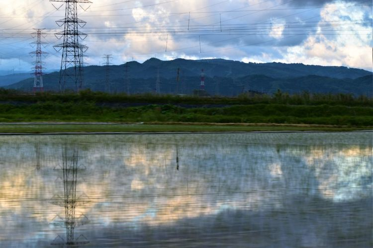 Agriculture Drive By Shooting Rice Rice Paddy SAKATA YAMAGATA Cloud - Sky Cultivated Land Drivebyphotography Electricity  Electricity Pylon Fuel And Power Generation Glassy Water Mountain Mt.chokaisan Reflection Scenics - Nature Sky Sunset Village Water 庄内米 鳥海山