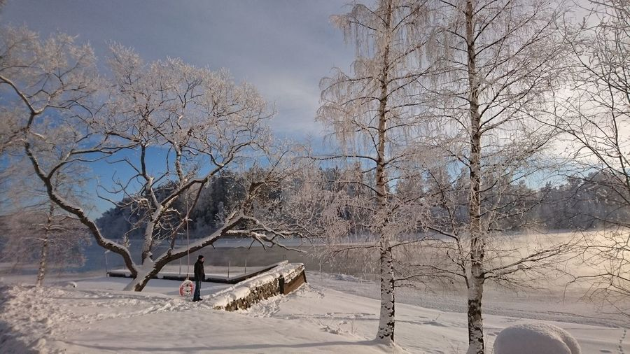 Man standing on snow by bare trees in park