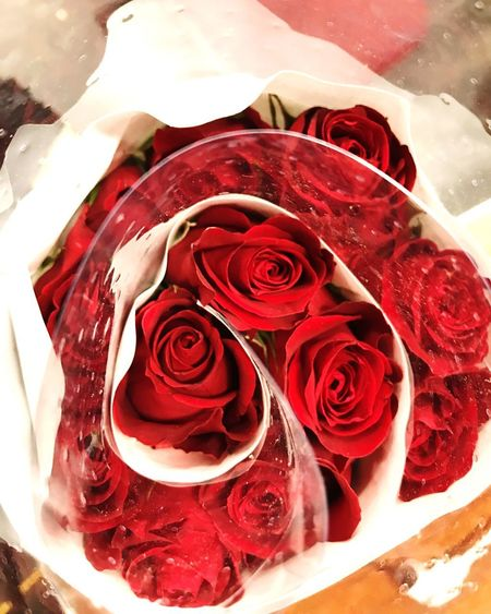 Boquet Of Roses Boquet Of Flowers Bouquet Love Roses_collection Roses Are Red Roses🌹 Roses Rose - Flower Flower Petal Red Nature Fragility Rose Petals Flower Head Freshness No People Indoors  Beauty In Nature Close-up