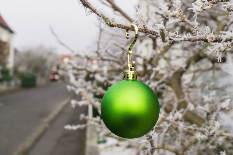 Christmas Architecture Branch Christmas Christmas Ball Christmas Bauble Christmas Decoration Christmas Decorations Christmas Ornament Christmas Tree Close-up Day Focus On Foreground Hanging No People Outdoor Outdoors Street Tree