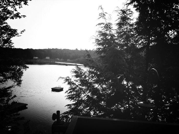 Morning view Enjoying Life