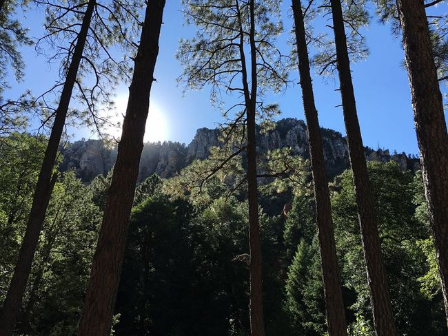 Oak Creek Canyon Camping ThisView Backtonature Family Time Trees Mountains Cherish The Moment