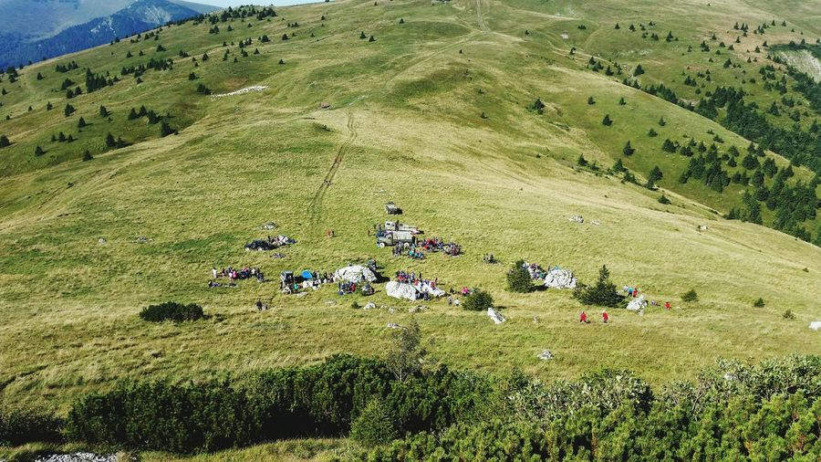 Hikingadventures Hikingphotography Vacation Large Group Of People Tourist Beautiful View From Rock Time With Family Slovakia Nature Ploska2016 High Angle View Large Group Of People Grass Leisure Activity Field Togetherness Nature Tranquility Vacations Relaxation Non-urban Scene Tranquil Scene Tourist Person Day Enjoyment