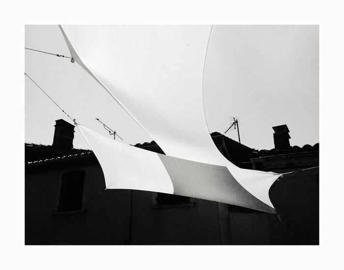 Papillon de ville Auto Post Production Filter Silhouette Nature Transfer Print Sky Architecture No People