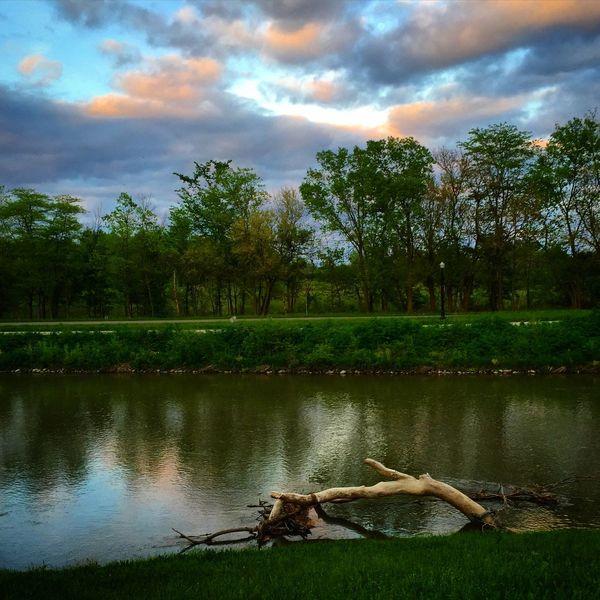 Reflection Spring White River