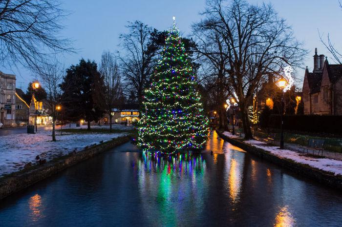 christmas tree Night Celebration Water Tree Illuminated Christmas Reflection River Bourton On The Water Snow