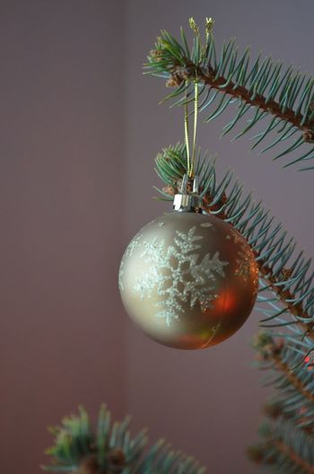 Interior Views christmas, ornaments, tree,