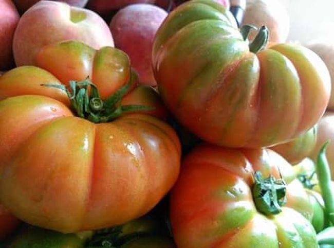 Huerta Mercado Central De Valencia. Tomates Vegetables Photo Vegetables Of EyeEm Vegetable Salad First Eyeem Photo