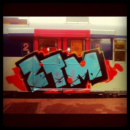 Graffiti Graff Transilien Train sncf ztm vandal