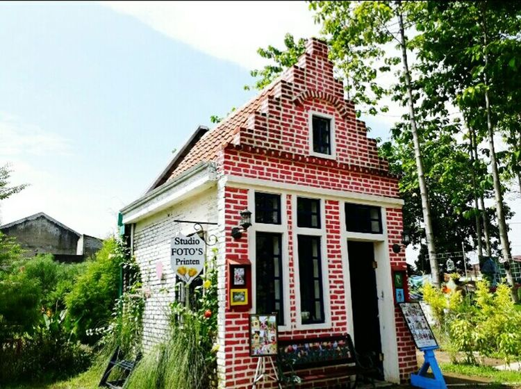 Adventures In The City Tree City Roof House Sky Architecture Building Exterior Built Structure Detached House Residential Structure Townhouse