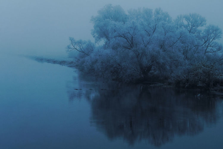Cold & misty morning Autumn River View Winter Bare Tree Beauty In Nature Cold Morning Fog Foggy Lake Low Visibility Misty Morning Mysterious Mystery Nature Reflection Riverbank Scenics Subzero Tranquil Scene Tranquility Tree Water Waterfront White Frost Winter