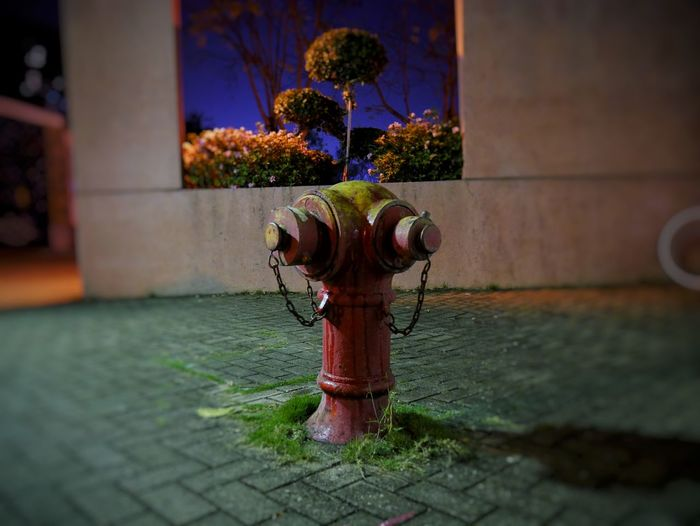Water No People Spraying Outdoors Architecture Bokehlicious Nightphotography