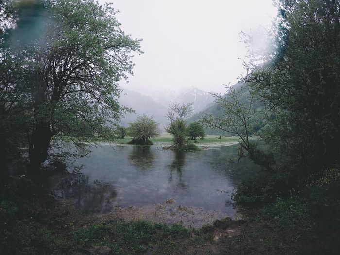 In you I'm lost Water Plant Tree Sky Nature Wet No People Reflection Growth Outdoors Beauty In Nature Rain Lake Tranquility Rainy Season RainDrop Day Green Color