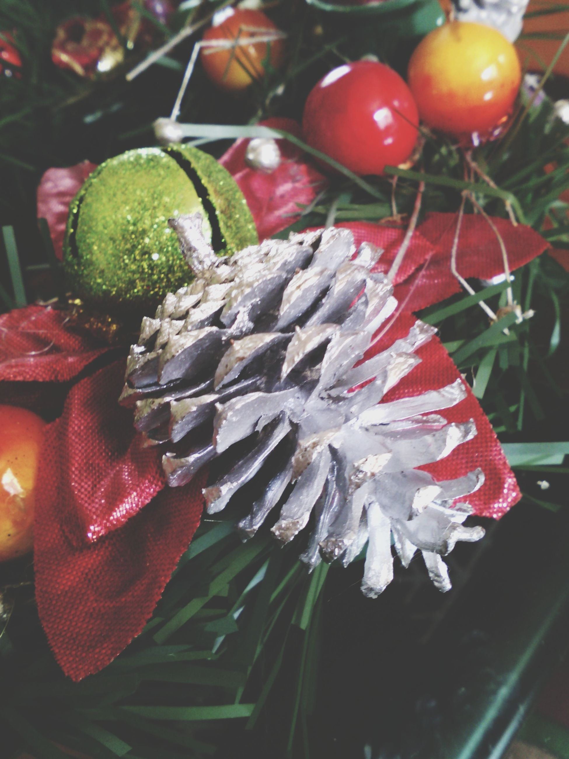 freshness, close-up, high angle view, flower, plant, indoors, red, focus on foreground, growth, no people, fragility, nature, leaf, potted plant, day, food and drink, table, still life, beauty in nature