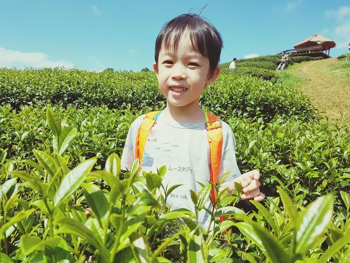 Portrait of boy smiling while standing at tea plantation