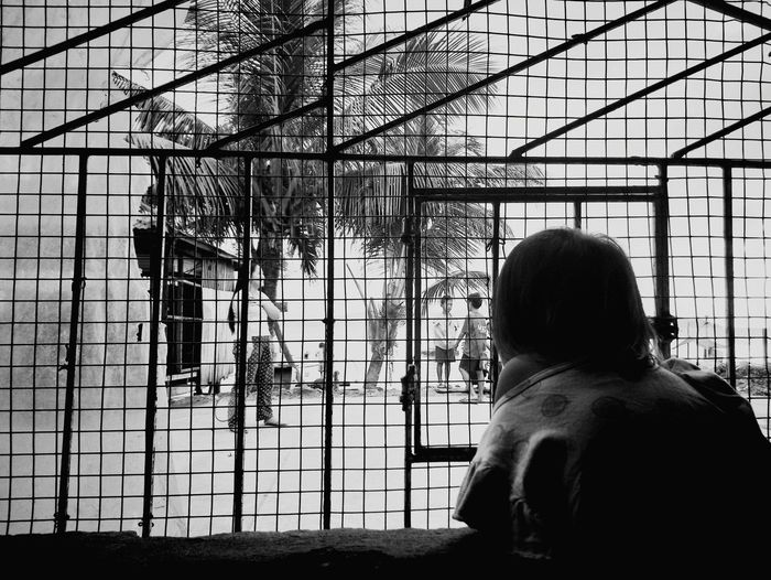 Girl looking out the window. Children Filipino Phillipines TOWNSCAPE SurigaoDelNorte Town Girl Metal Grate Blackandwhite Tropical Climate Coconut Palm Tree Children Playing Small Store Preschooler Asian  Urban Residential  Cage Human Back