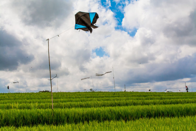Windsocks and kite on grassy field against cloudy sky