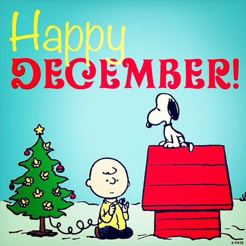 December is here! December ItsTheMostWonderfulTimeOfTheYear Ilovetheholidays Christmas time