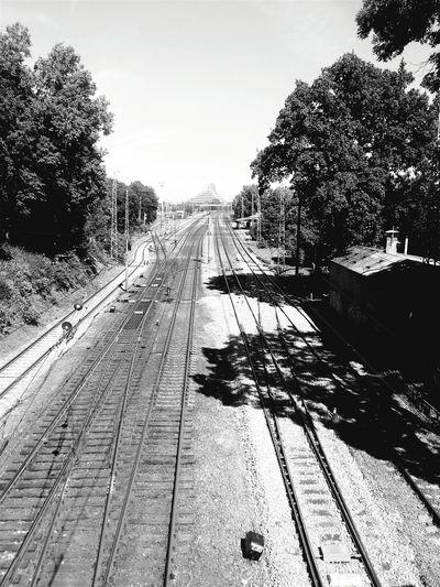 Train Train Station Train Tracks Black & White Perspective