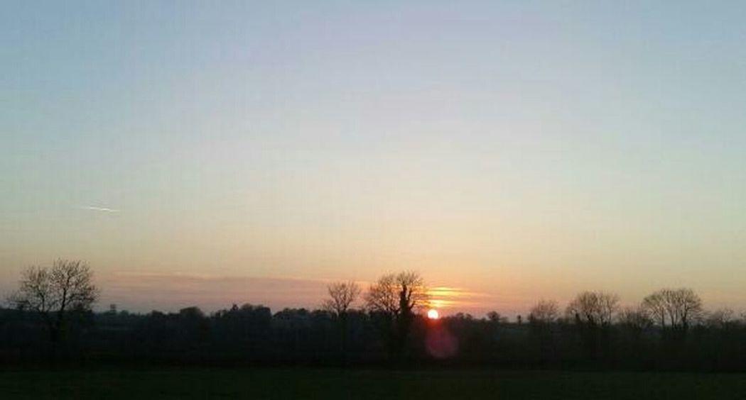 this evening's horizon #horizon #amlp #skies