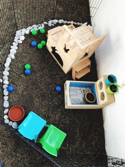 EyeEm Selects Rabbitplayground Rabbithouse