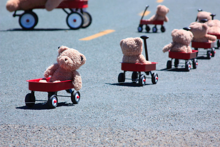 Teddy bears in toy cars on road