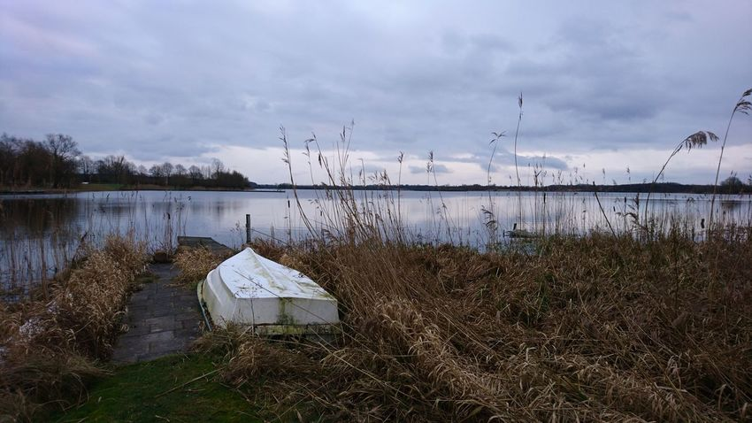 The boat. Klocksdorf Germany Mecklenburg-Vorpommern Meckpomm Lake Lake View Lakeshore Lakeside Lakeview Winter Gray Gray Sky Cold Water Waterfront Tristesse Melancholy Melancholic Landscapes Grass Bird Water Flying Flamingo Lake Flock Of Birds Sky Grass Animal Themes Landscape