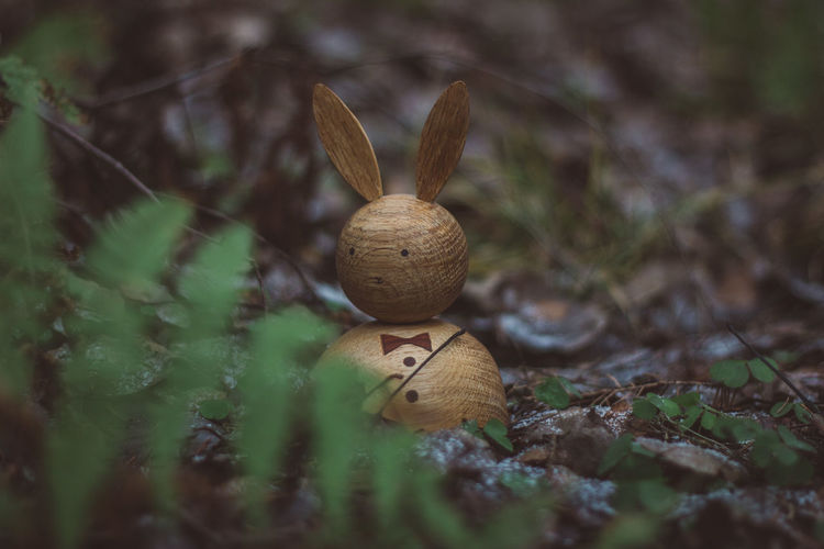 Wood Wood - Material Wooden Toy Toys Wooden Toys Rabbit Selective Focus No People Close-up Nature Land Plant Day Growth Gastropod Representation Mollusk Mushroom Field Art And Craft Shell Fungus Outdoors Snail Figurine  Leaf Toadstool