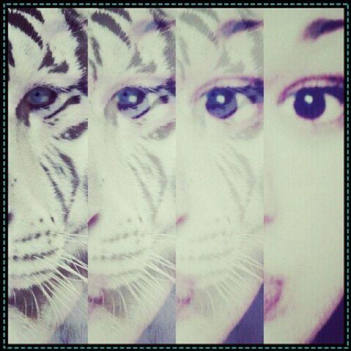 глазки Love Beautiful