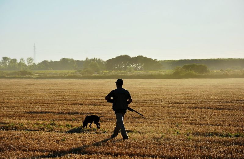 Rear view of man with dog on agriculture field against sky