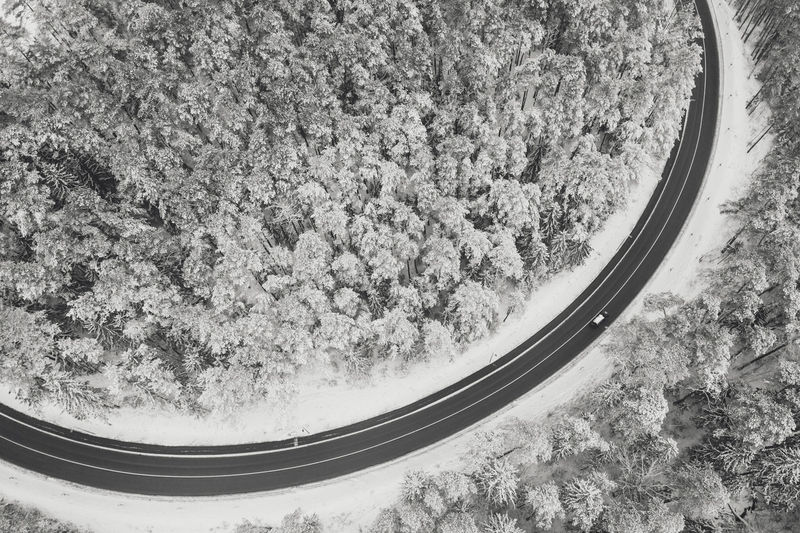 Aerial view of road amidst snowy trees