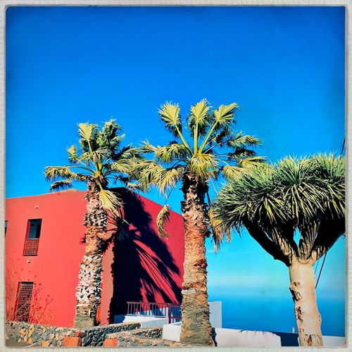 Rot El Hierro Island El Hierro, Canary Islands, Spain Sky Blue Architecture Tree Plant Nature Built Structure Clear Sky Sunlight Outdoors No People Architectural Column Tropical Climate Building Exterior