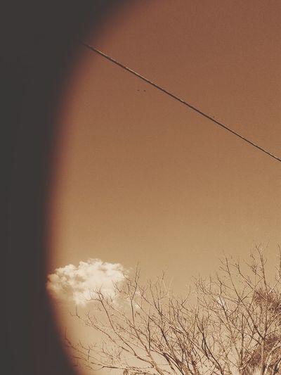 Cutecloud Sky