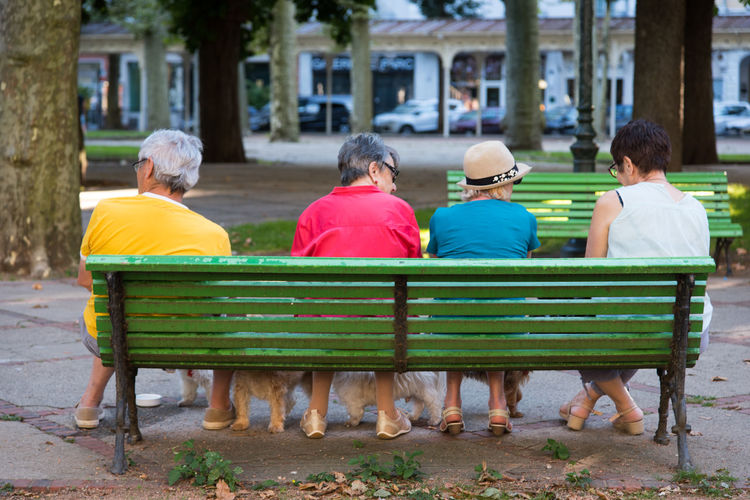 Rear View Of Senior Female Friends Sitting On Bench With Dogs In City