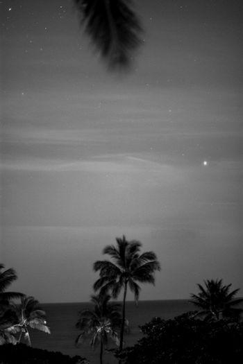 A Blackandwhite of the beach from Kaka'ako Beach Park. Nightphotography Living On Borrowed Time EyeEm Best Shots EyeEm Best Shots - Black + White Sky Collection The Minimals (less Edit Juxt Photography) Honolulu, Hawaii Eye4photography  Beachphotography