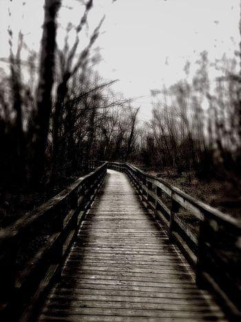 Blackandwhite Bridge Taking Photos Enjoying Life