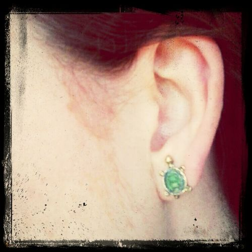 Things That Are Green Turtle Earring  Ear