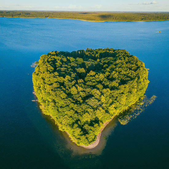 Island, Plateliai lake Aerial Shot Drone  Lietuva Lithuania Nature Lithuanian Landscape Aerial Aerial View Beauty In Nature Day Drone Photography Europe Green Color Growth High Angle View Idyllic Land Landscape Mavic Mavic Pro Nature No People Non-urban Scene Outdoors Plant Scenics - Nature Sea Swamp Tranquil Scene Tranquility Water Yellow The Great Outdoors - 2018 EyeEm Awards
