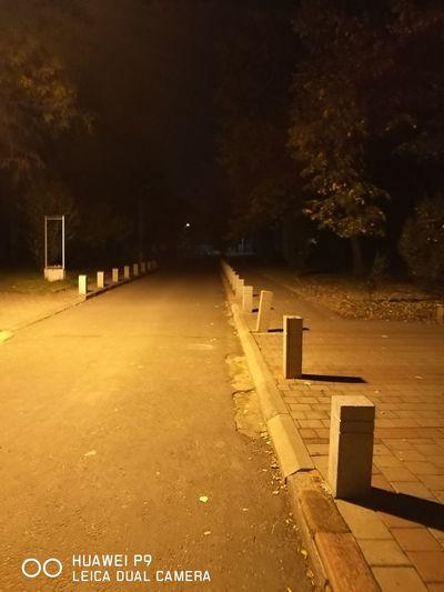 Empty road along trees at night