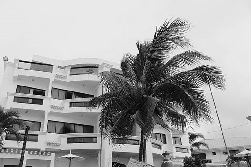 Embrace the point of no return VSCO Vscocam Vscophile VSCOPH Vscomanila VSCOPH Vscogood Vscomoment Instapic Instagood Instamoment Vscopinas Vitalisvillas Ilocossur Santorini Travelling Vacation Resort Photographsbyjeremiah Blackandwhite
