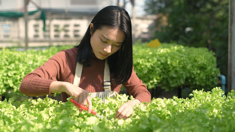 Midsection of woman holding red flowering plants