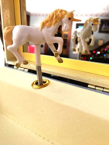 Reflection Musicbox Mirror Unicorn
