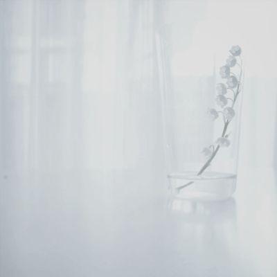 Flowers White Album
