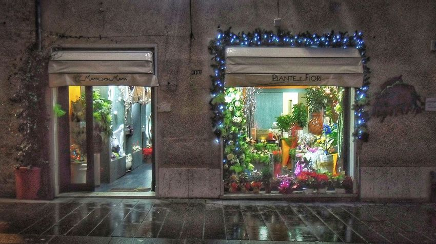 """Flowers shop christmas time"". Christmas Lights Christmas Decorations Christmas Time Flowers Shop Shop Window Vetrine Street Photography Night Photography Rainy Days Point And Shoot camera."