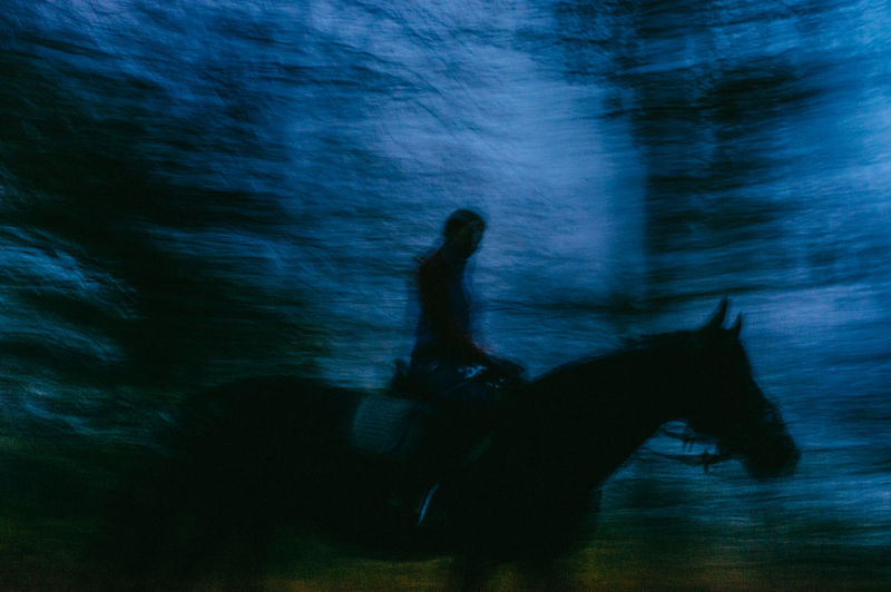 Mammal Domestic Animals Domestic One Animal Motion Vertebrate Pets Blurred Motion Animal Wildlife Side View Canine Horse Real People People Nature Leisure Activity Outdoors Night Ride Forest Gloomy Dark My Best Photo