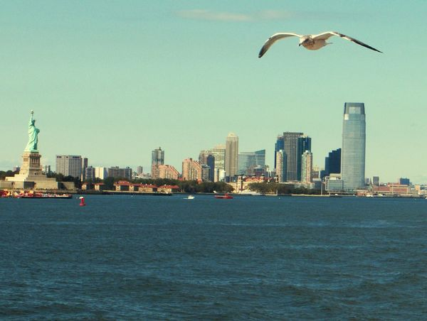 New York City New York Skyline  New York Minute Statue Of Liberty SEAGULL IN FLIGHT Skyline EyeEm Best Shots Capturing The Moment Real Life Background City Life Staten Island Ferry Financial District  Colours Sky's The Limit All In My Picture Take A Look