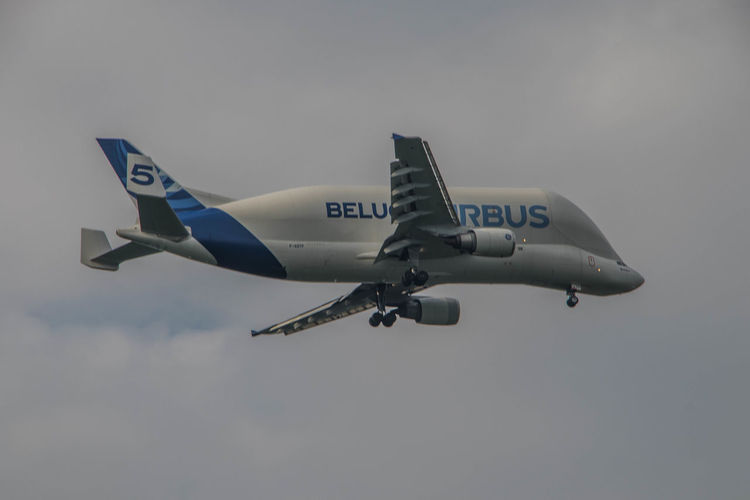 Airbus Elbe River Hamburg Hamburger Hafen Landing Air Force Air Vehicle Airbus Beluga Airplane Airshow Day Elbe Fighter Plane Finkenwerder Flying Hamburgmeineperle Mid-air Military Military Airplane No People Outdoors Sky Transportation