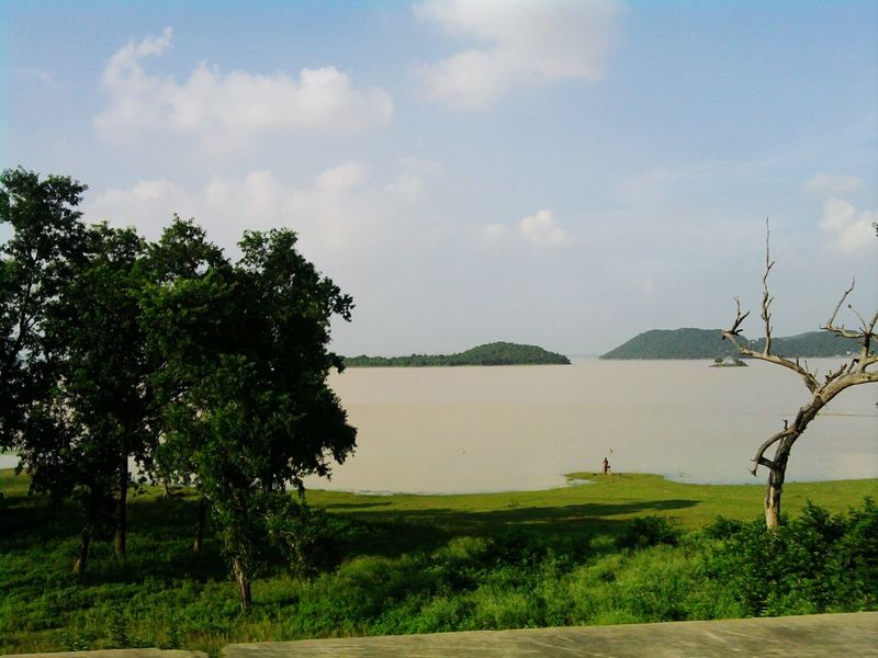 Tree Field Agriculture Rural Scene Cloud - Sky Lake Irrigation Equipment Outdoors Beauty In Nature Dam Maithon Dam West Bengal India Day
