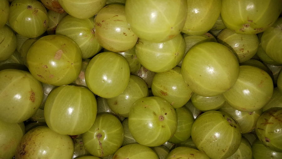 Gooseberries Healthy Eating Green Color Abundance Healthy Lifestyle Freshness Food And Drink Fruit Photography Eyeemphotography Eyeem Gallary Market EyeEm Eyeem Market EyeEm Gallery Getty+EyeEm Collection Eyeem4photography Eyeem Collection Getty Image-collection EyeEm Masterclass Eyeem Photography EyeEm Gallery Vitamin C Gooseberries Gooseberry Fruit Gooseberrry Fruit Collection Vitamin C Nutritious Fruit